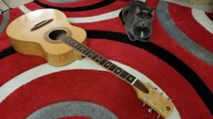 aaron_guitar